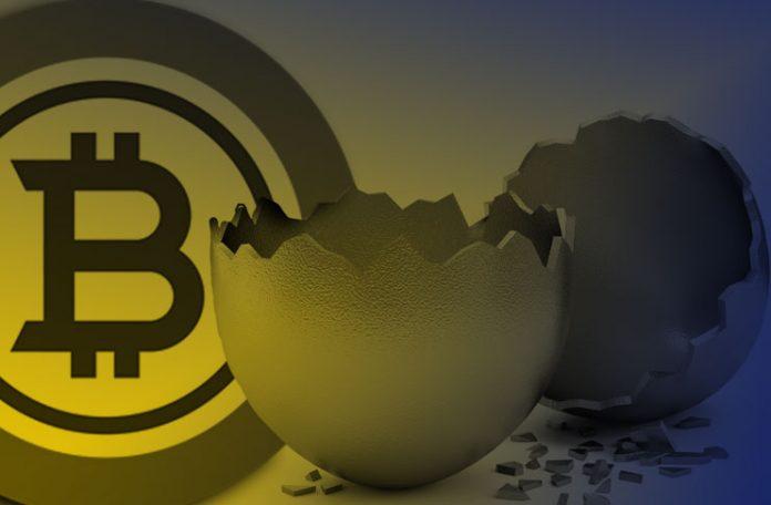 View Bitcoin Asli Images