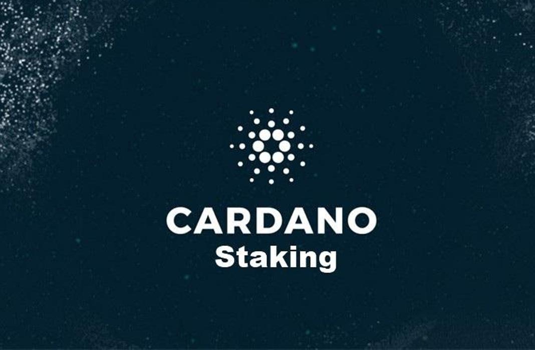 Staking Cardano